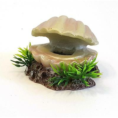 Aquarium Fish Tank Ornament Oyster Sea Shell Small Decoration Opt. Bubbles 28852