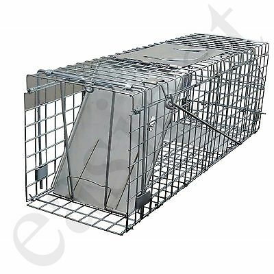 Squirrel Trap Heavy Duty Metal Humane Live Vermin Pest Animal Large Cage Catcher