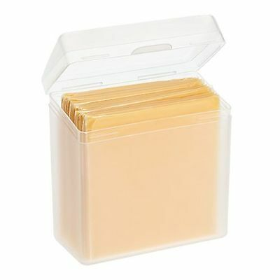 Single Cheese Slices Stay Fresh Storage Container #7049   NEW