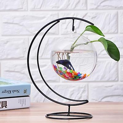 Creative Hanging Clear Vase Fish Tank Plant Flowers Pot Terrarium Decor 15cm