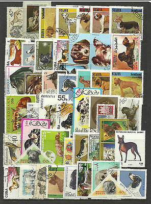 DOGS Collection Packet of 50 Different WORLD Stamps