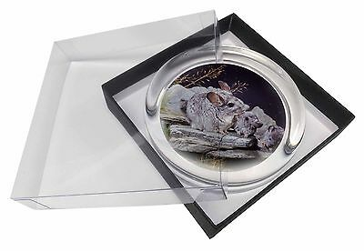 South American Chinchillas Glass Paperweight in Gift Box Christmas Pres, ACH-1PW
