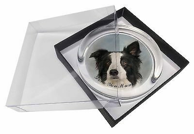 Border Collie Dog 'Love You Mum' Glass Paperweight in Gift Box Chr, AD-BC13lymPW