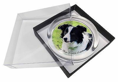 Border Collie Dog 'Love You Grandma' Glass Paperweight in Gift Box, AD-CO69lygPW
