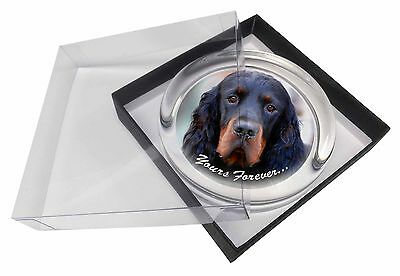 Gordon Setter 'Yours Forever' Glass Paperweight in Gift Box Christma, AD-GOR2yPW