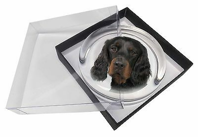 Gordon Setter Glass Paperweight in Gift Box Christmas Present, AD-GOR3PW