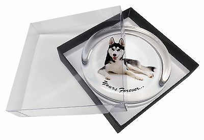 """Boxer Dog /""""Yours Forever.../"""" Single Leather Photo Coaster Animal Bree AD-B52ySC"""
