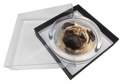 Fawn Pug Dog 'Love You Grandma' Glass Paperweight in Gift Box Christ, AD-P1lygPW
