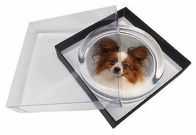 Papillon Dog Glass Paperweight in Gift Box Christmas Present, AD-PA1PW