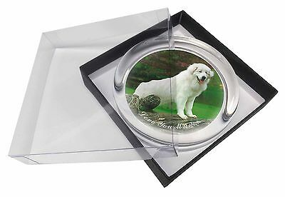 Pyrenean Mountain Dog 'Love You Mum' Glass Paperweight in Gift Box , AD-PM1lymPW