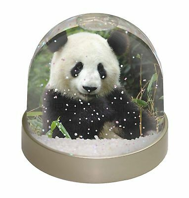 Beautiful Panda Bear Photo Snow Dome Waterball Stocking Filler Gift, ABP-1GL