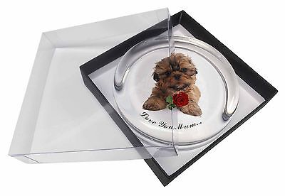 Shih Tzu Dog with Rose 'Mum' Glass Paperweight in Gift Box Christm, AD-SZ4RlymPW