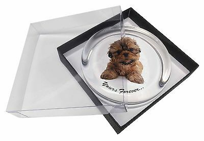 Shih Tzu Dog 'Yours Forever' Glass Paperweight in Gift Box Christmas P, AD-SZ6PW