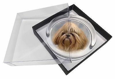 Shih Tzu Dog Glass Paperweight in Gift Box Christmas Present, AD-SZ9PW