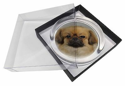 Tibetan Spaniel Dog Glass Paperweight in Gift Box Christmas Present, AD-TS2PW