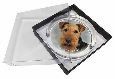 Welsh Terrier Dog 'Love You Mum' Glass Paperweight in Gift Box Chri, AD-WT1lymPW
