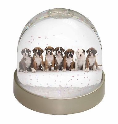 Boxer Dog Puppies Photo Snow Dome Waterball Stocking Filler Gift, AD-B29GL