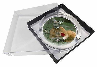Kangaroo with Red Rose Glass Paperweight in Gift Box Christmas Present, AK-1RPW