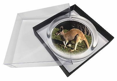 Kangaroo Glass Paperweight in Gift Box Christmas Present, AK-2PW