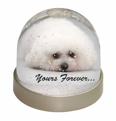 Bichon Frise Dog 'Yours Forever' Photo Snow Dome Waterball Stocking Fi, AD-BF3GL