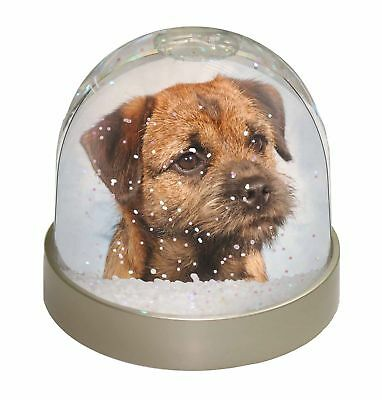 Border Terrier Photo Snow Dome Waterball Stocking Filler Gift, AD-BT2GL