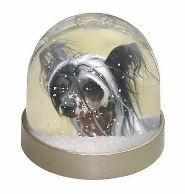 Chinese Crested Dog Photo Snow Dome Waterball Stocking Filler Gift, AD-CHC2GL