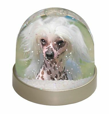 Chinese Crested Dog Photo Snow Dome Waterball Stocking Filler Gift, AD-CHC4GL