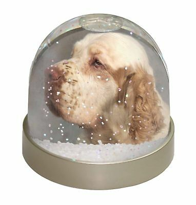 Clumber Spaniel Dog Photo Snow Dome Waterball Stocking Filler Gift, AD-CS1GL