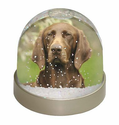 German Pointer Dog Photo Snow Dome Waterball Stocking Filler Gift, AD-GSP1GL
