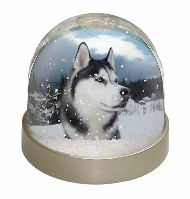 Siberian Husky Dog Photo Snow Dome Waterball Stocking Filler Gift, AD-H52GL