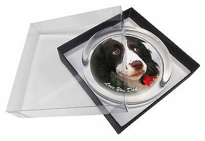 Springer Spaniel 'Love You Dad' Glass Paperweight in Gift Box Christm, DAD-118PW