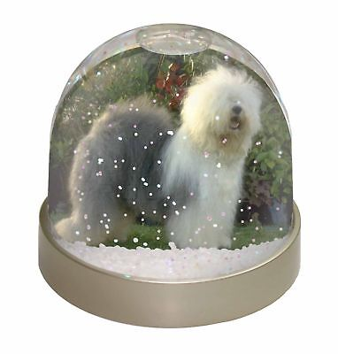 Old English Sheepdog Photo Snow Dome Waterball Stocking Filler Gift, AD-OES1GL