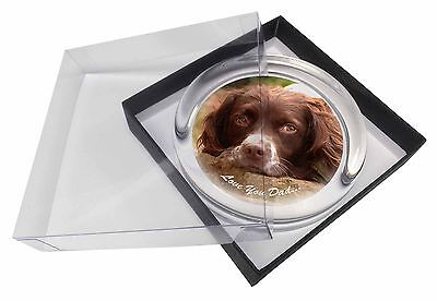 Springer Spaniel 'Love You Dad' Glass Paperweight in Gift Box Christm, DAD-190PW