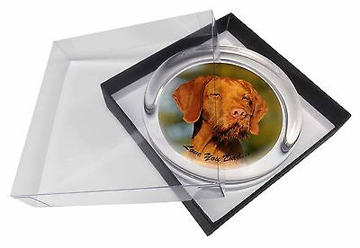 Wirehaired Vizsla 'Love You Dad' Glass Paperweight in Gift Box Christm, DAD-57PW