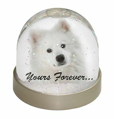 Samoyed Dog 'Yours Forever' Photo Snow Dome Waterball Stocking Filler, AD-SO75GL