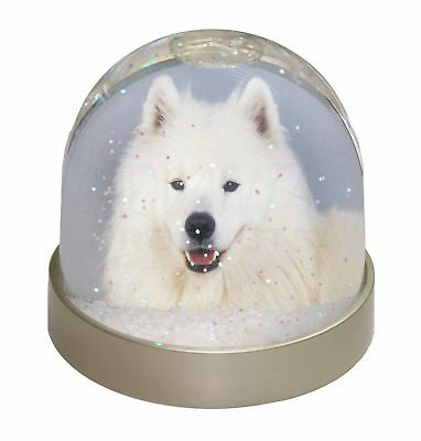 Samoyed Dog Photo Snow Dome Waterball Stocking Filler Gift, AD-SO76GL