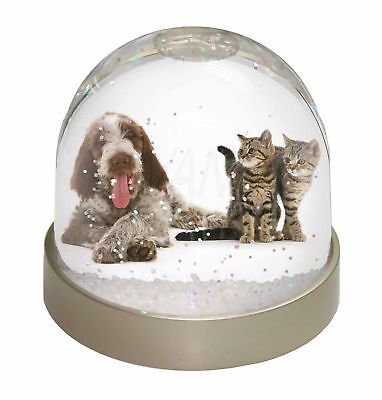 Italian Spinone Dog and Kittens Photo Snow Dome Waterball Stocking Fil, AD-SP1GL