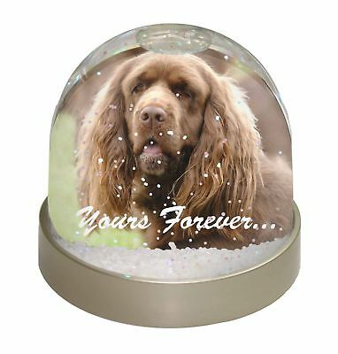 Sussex Spaniel 'Yours Forever' Photo Snow Dome Waterball Stocking Fi, AD-SUS1yGL