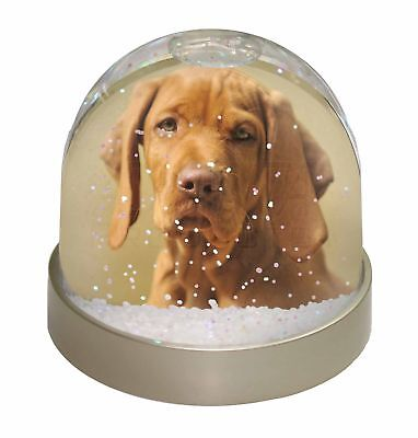 Hungarian Vizsla Dog Photo Snow Dome Waterball Stocking Filler Gift, AD-V2GL