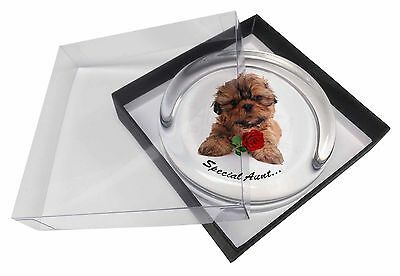 Shih Tzu Dog 'Special Aunt' Glass Paperweight in Gift Box Christmas P, SA-SZ4RPW