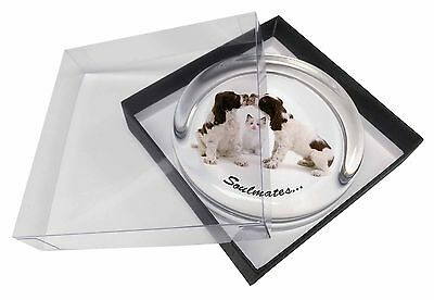 Dogs and Cat Love Sentiment 'Soulmates' Glass Paperweight in Gift Box, SOUL-53PW