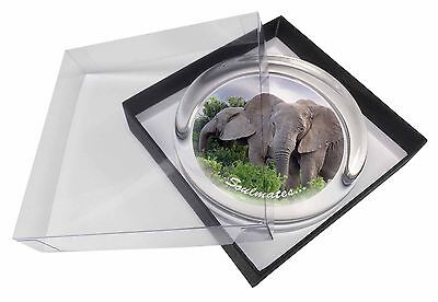 Elephants 'Soulmates' Sentiment Glass Paperweight in Gift Box Christm, SOUL-66PW