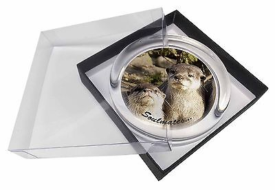 Cute Otters 'Soulmates' Glass Paperweight in Gift Box Christmas Prese, SOUL-72PW