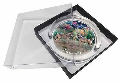 Wolves 'Soulmates' Sentiment Glass Paperweight in Gift Box Christmas , SOUL-84PW