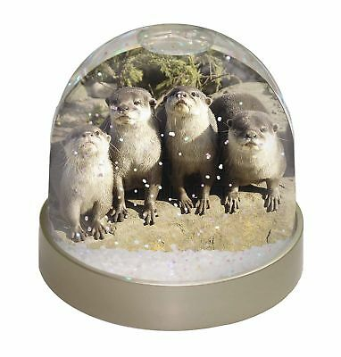 Cute Otters Photo Snow Dome Waterball Stocking Filler Gift, AO-6GL