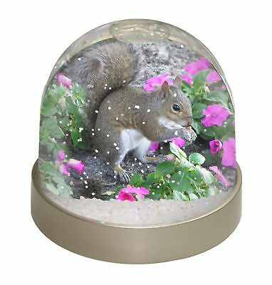 Squirrel by Flowers Photo Snow Dome Waterball Stocking Filler Gift, AS-1GL