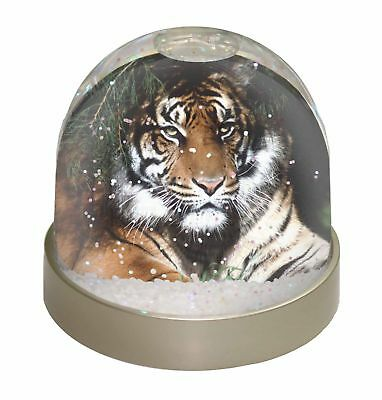 AW-9GL Wolves  in Love Photo Snow Globe Waterball Stocking Filler Gift