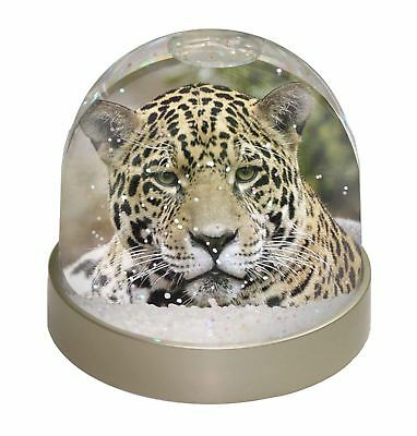 Leopard Photo Snow Dome Waterball Stocking Filler Gift, AT-38GL