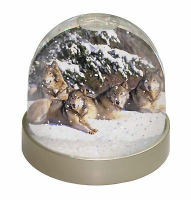 Wolves in Snow Photo Snow Dome Waterball Stocking Filler Gift, AW-8GL