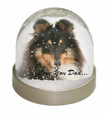 Tri-Col Sheltie Dog 'Love You Dad' Photo Snow Dome Waterball Stocking, DAD-108GL